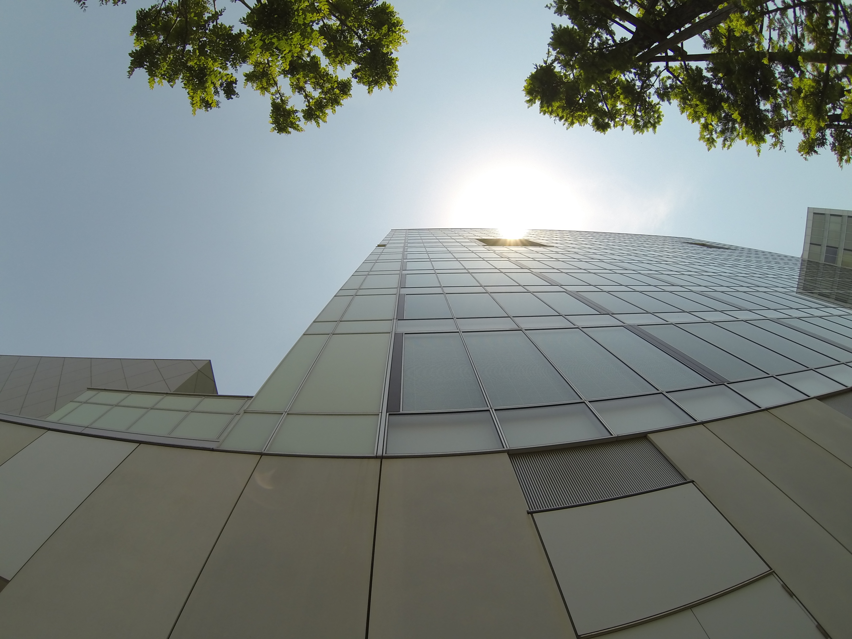 ビルを見上げる視点と太陽