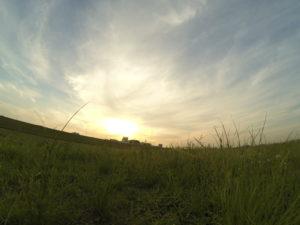 芝生から見上げる夕暮れ