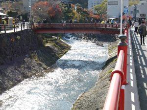 橋の欄干に映える紅葉