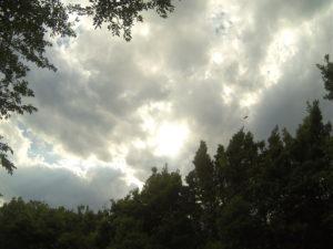 嵐の前兆のような雲