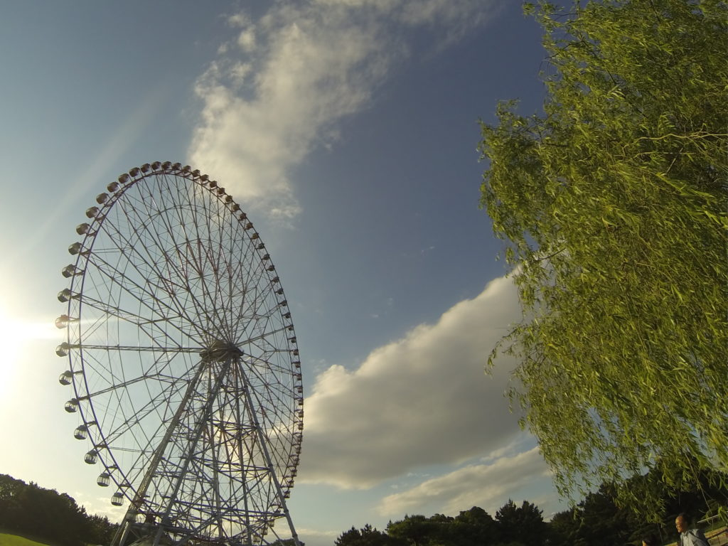 観覧車と青空と柳の木
