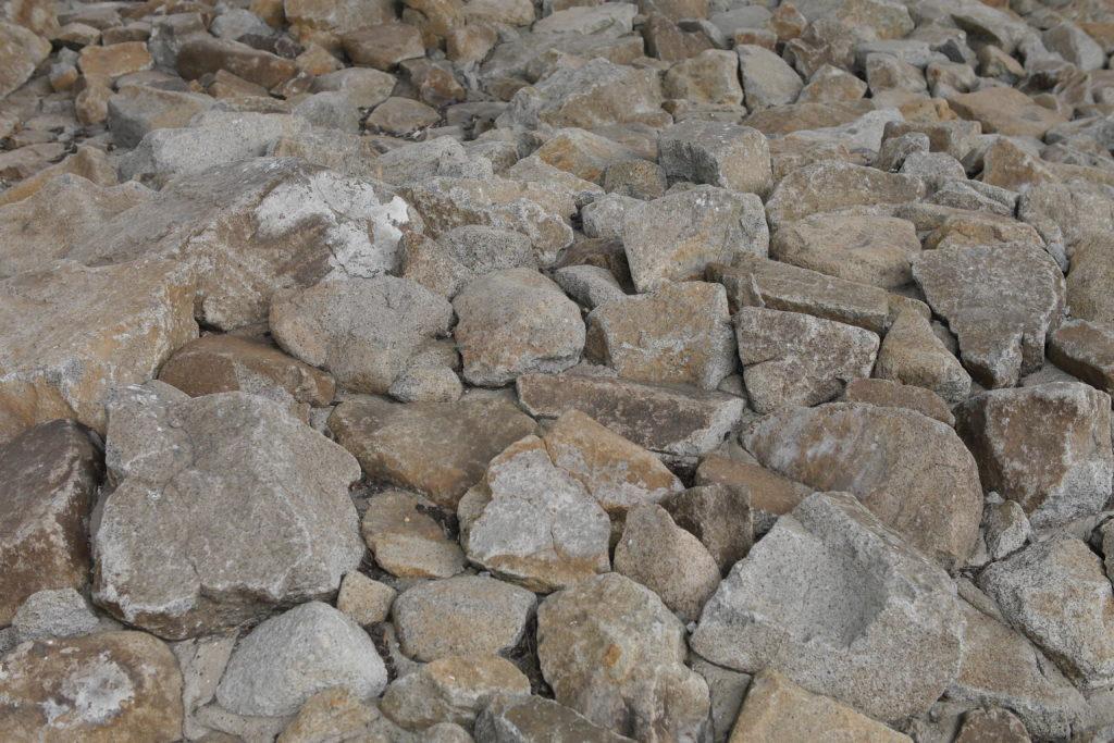 夏の乾いた小さな石