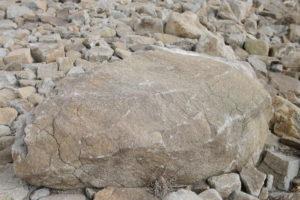 夏の乾いた大きな石