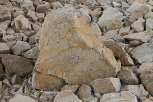 ヒビ割れた大きな岩
