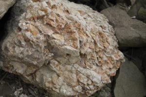 海の岩場の赤い岩