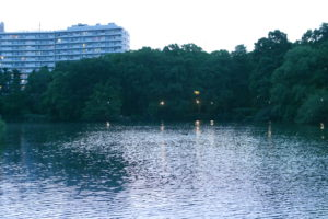街灯が映り込む池