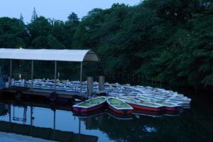 井の頭恩賜公園のボート